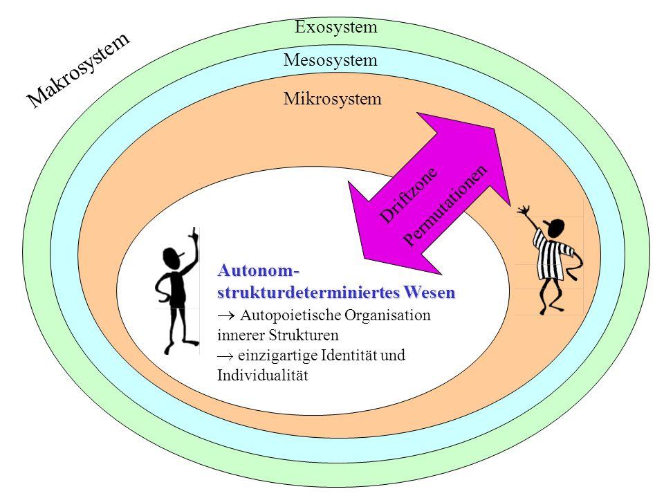 Exosystem Mesosystem Mikrosystem Driftzone Permutationen Autonom- strukturdeterminiertes Wesen Autopoietische Organisation innerer Strukturen einzigar