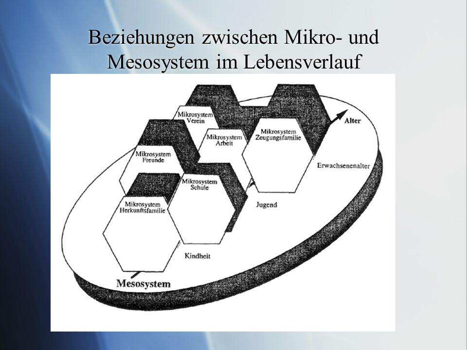 Beziehungen zwischen Mikro- und Mesosystem im Lebensverlauf