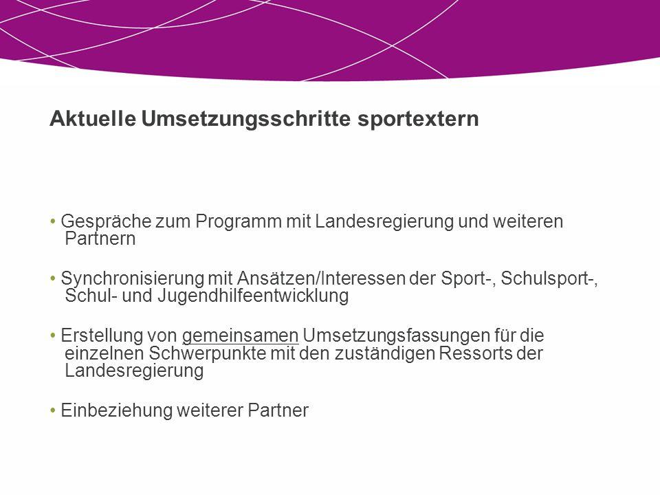 Aktuelle Umsetzungsschritte sportextern Gespräche zum Programm mit Landesregierung und weiteren Partnern Synchronisierung mit Ansätzen/Interessen der