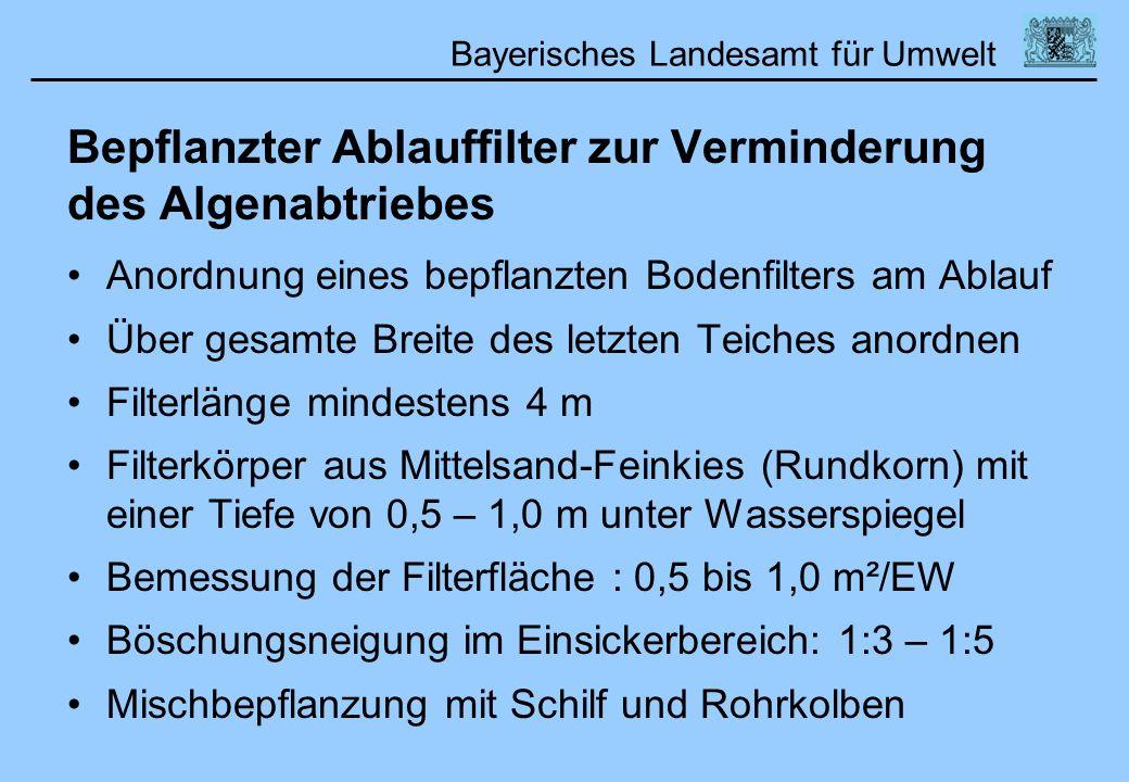 Bayerisches Landesamt für Umwelt Bepflanzter Ablauffilter zur Verminderung des Algenabtriebes Anordnung eines bepflanzten Bodenfilters am Ablauf Über
