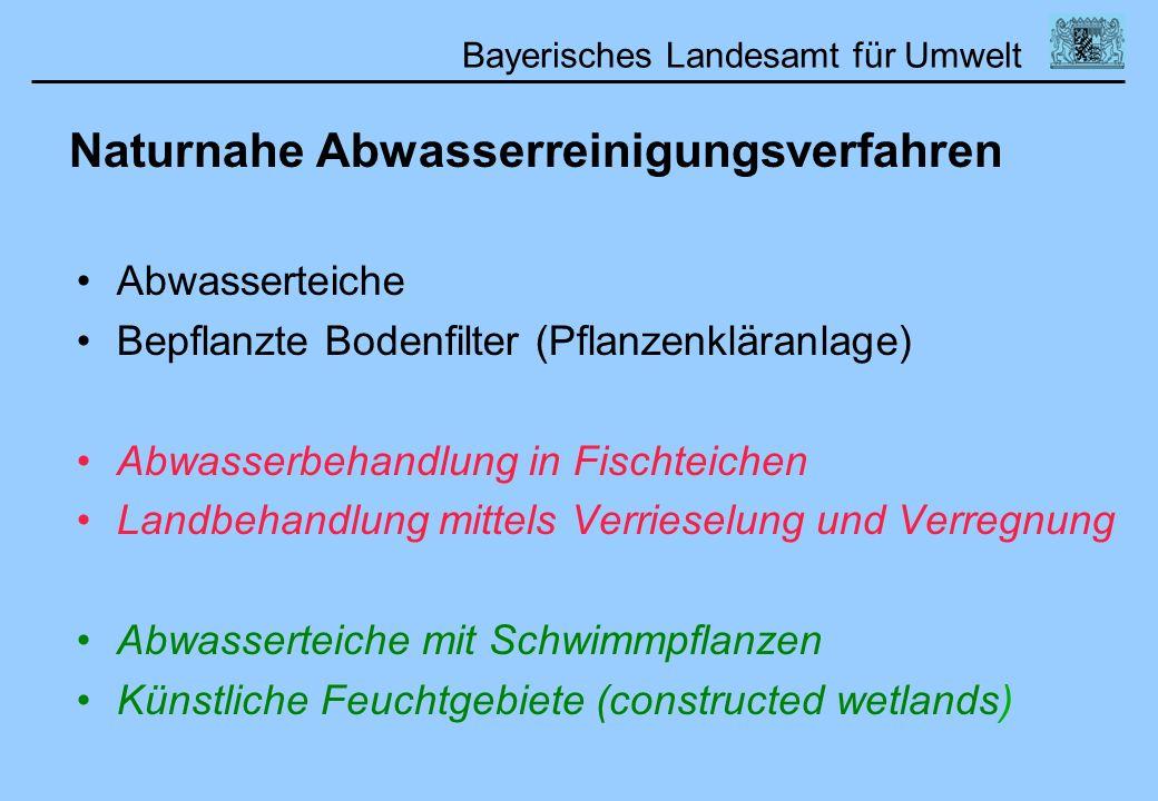 Bayerisches Landesamt für Umwelt Naturnahe Abwasserreinigungsverfahren Abwasserteiche Bepflanzte Bodenfilter (Pflanzenkläranlage) Abwasserbehandlung i