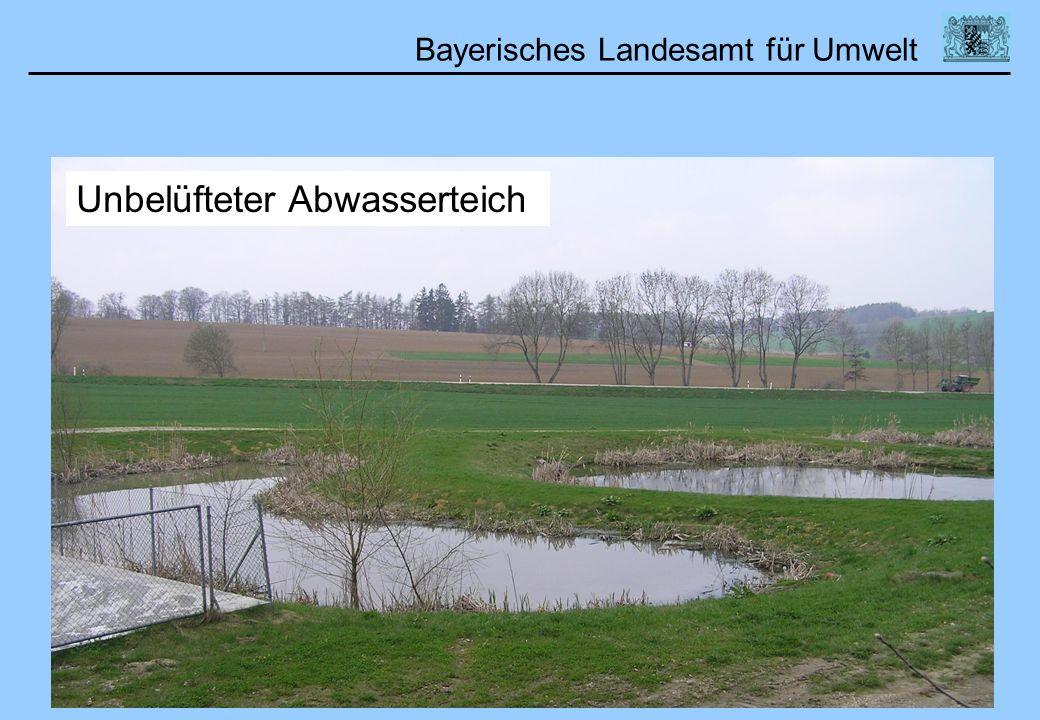 Bayerisches Landesamt für Umwelt Unbelüfteter Abwasserteich