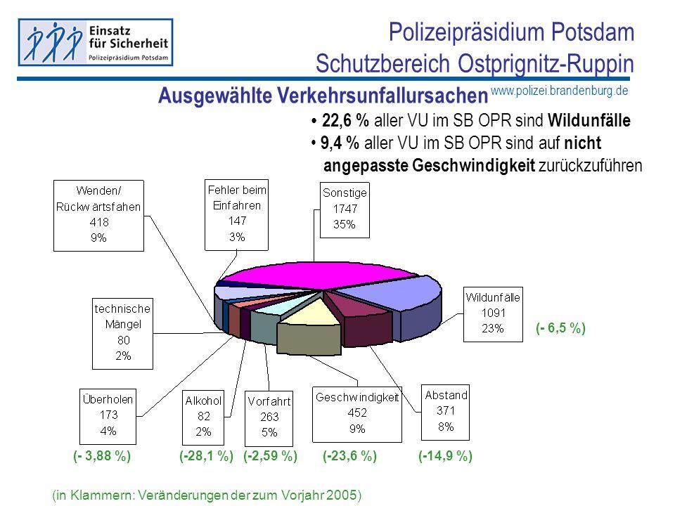 www.polizei.brandenburg.de Polizeipräsidium Potsdam Schutzbereich Ostprignitz-Ruppin Maßnahmen zur Verkehrsunfallbekämpfung 166.331 Geschwindigkeitsmessungen (+ 28.352 Messungen zum Vorjahr 2005) 477 Feststellungen folgenloser Trunkenheitsfahrten unter Einfluss von Alkohol (+ 19 Feststellungen zum Vorjahr 2005) 208 Feststellungen von Fahrten unter Einfluss von Drogen (+ 107 Feststellungen zum Vorjahr 2005) 6.063 festgestellte Verstöße im Bereich des gewerblichen Personen- und Güterverkehrs (+ 177 Feststellungen zum Vorjahr 2005)