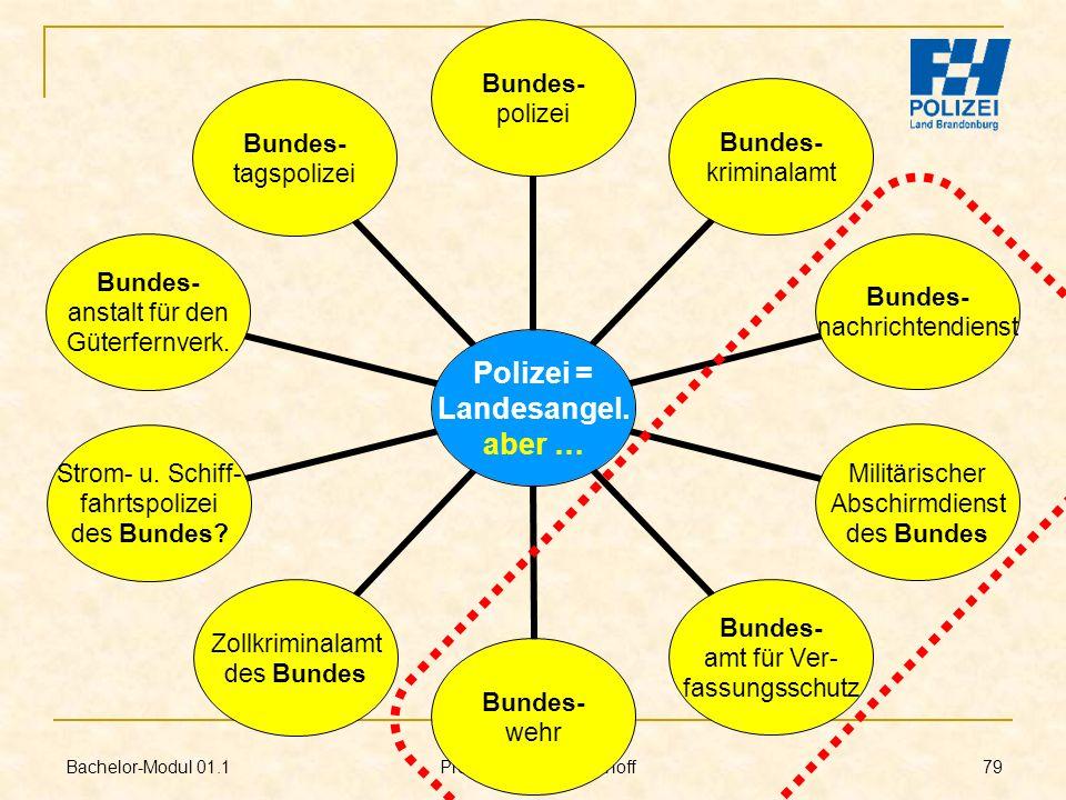Bachelor-Modul 01.1 Prof. Dr. Guido Kirchhoff 79 Polizei = Landesangel. aber … Bundes- polizei Bundes- kriminalamt Bundes- nachrichtendienst Militäris