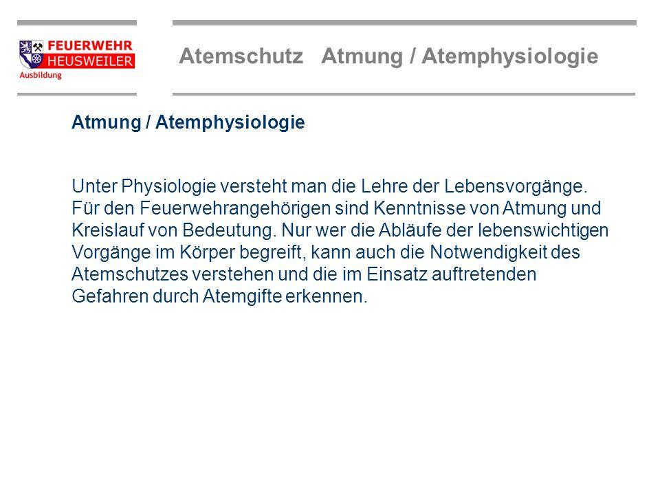 Atemschutz Atmung / Atemphysiologie Zusammensetzung der Atemluft 78 % 21 % 17 % 0,04 % 4,04 % 0,96 %