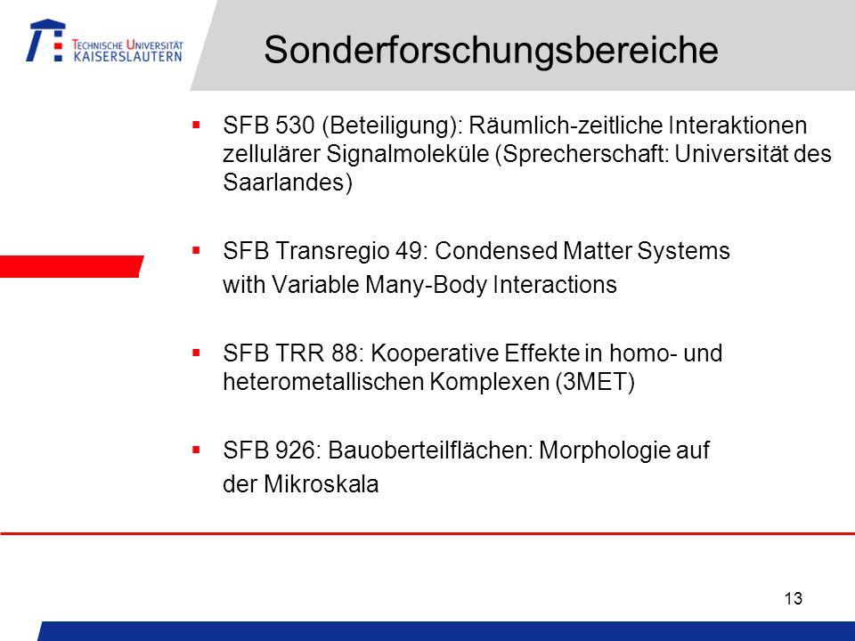 13 Sonderforschungsbereiche SFB 530 (Beteiligung): Räumlich-zeitliche Interaktionen zellulärer Signalmoleküle (Sprecherschaft: Universität des Saarlan