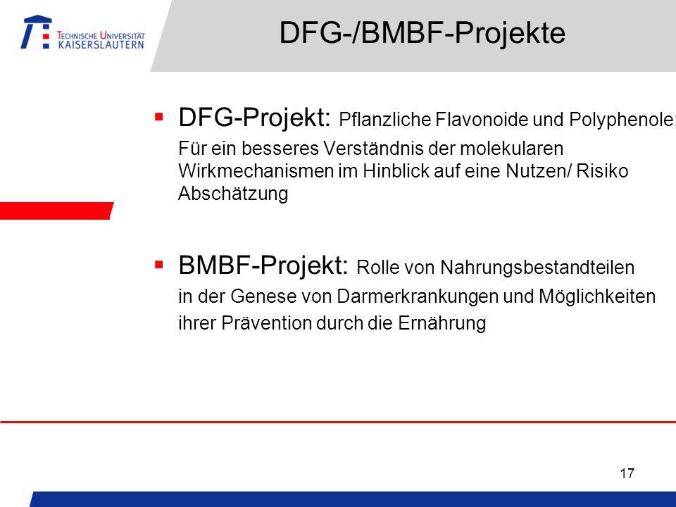 17 DFG-/BMBF-Projekte DFG-Projekt: Pflanzliche Flavonoide und Polyphenole: Für ein besseres Verständnis der molekularen Wirkmechanismen im Hinblick auf eine Nutzen/ Risiko Abschätzung BMBF-Projekt: Rolle von Nahrungsbestandteilen in der Genese von Darmerkrankungen und Möglichkeiten ihrer Prävention durch die Ernährung