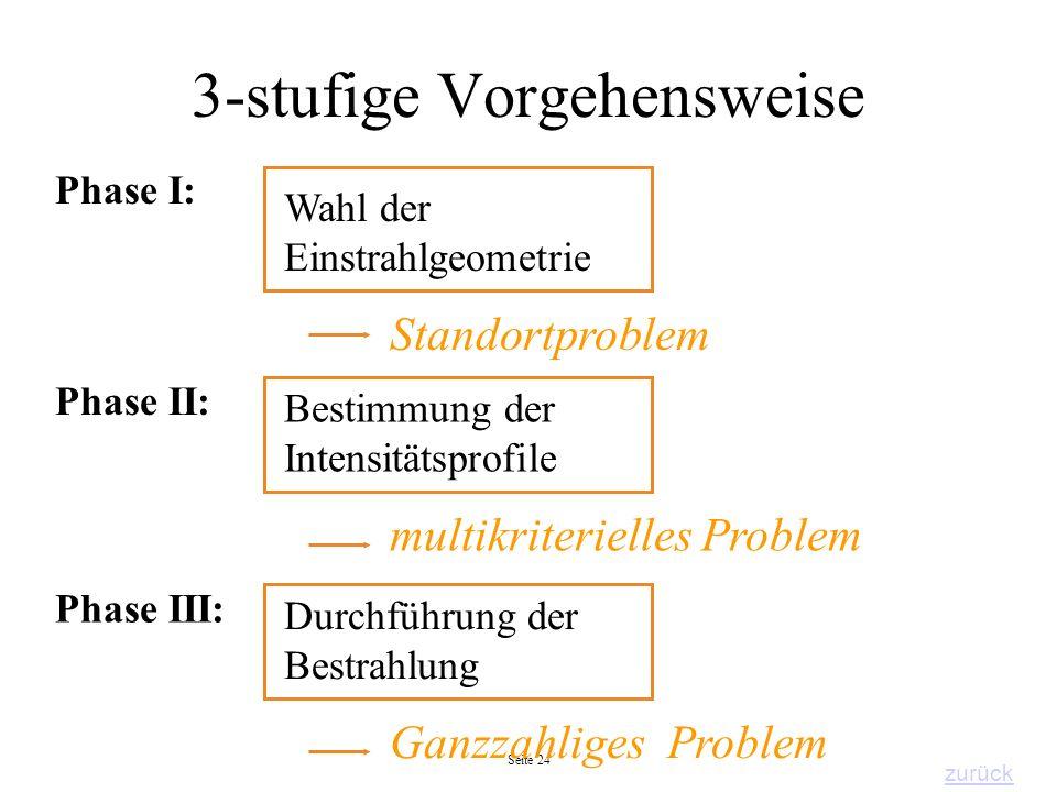 Seite 24 3-stufige Vorgehensweise Wahl der Einstrahlgeometrie Bestimmung der Intensitätsprofile Phase I: Phase II: multikriterielles Problem Standortp