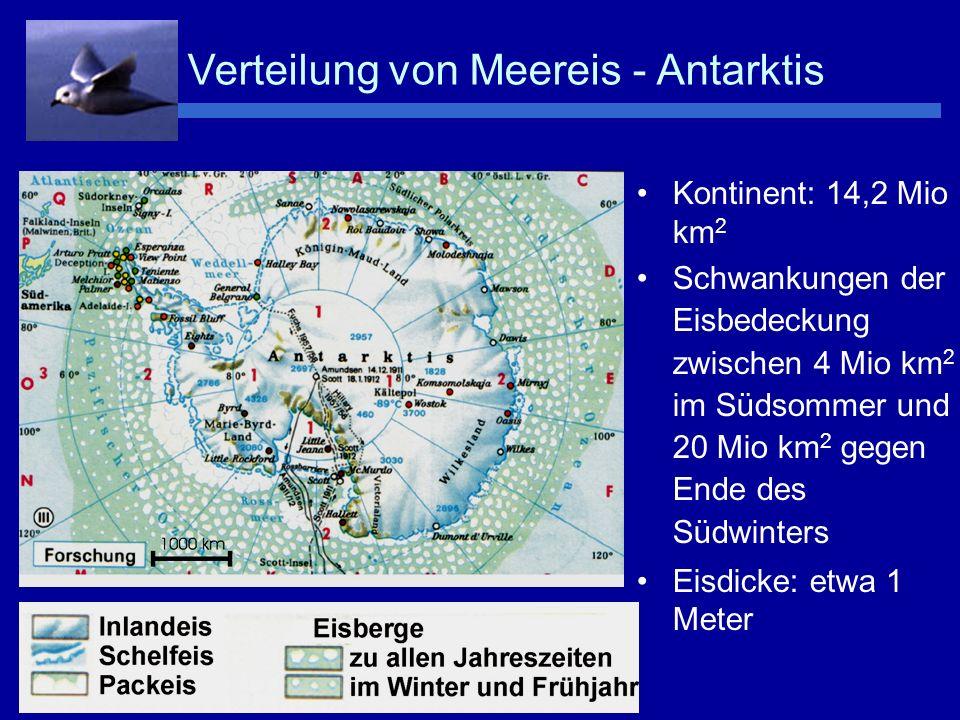 Bildung von Neueis –T < -1.8°C Entstehung von Meereis bei Wellengang