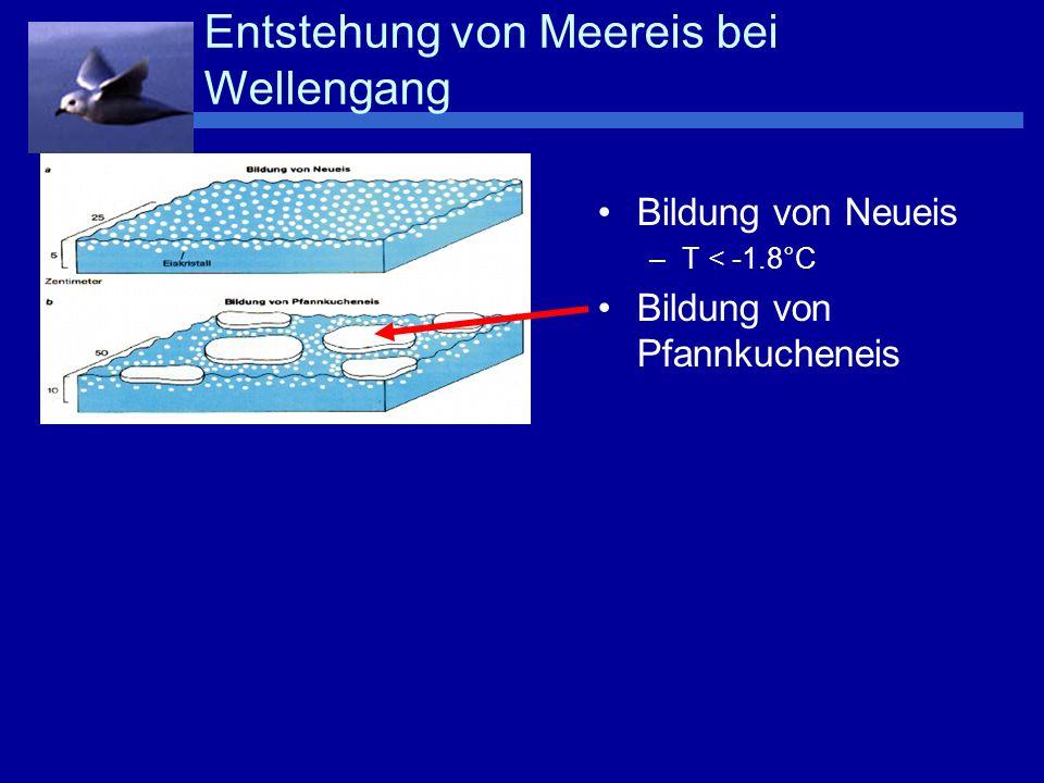 Bildung von Neueis –T < -1.8°C Bildung von Pfannkucheneis Zusammenwachsen der Schollen, Überschiebungen Entstehung von Meereis bei Wellengang