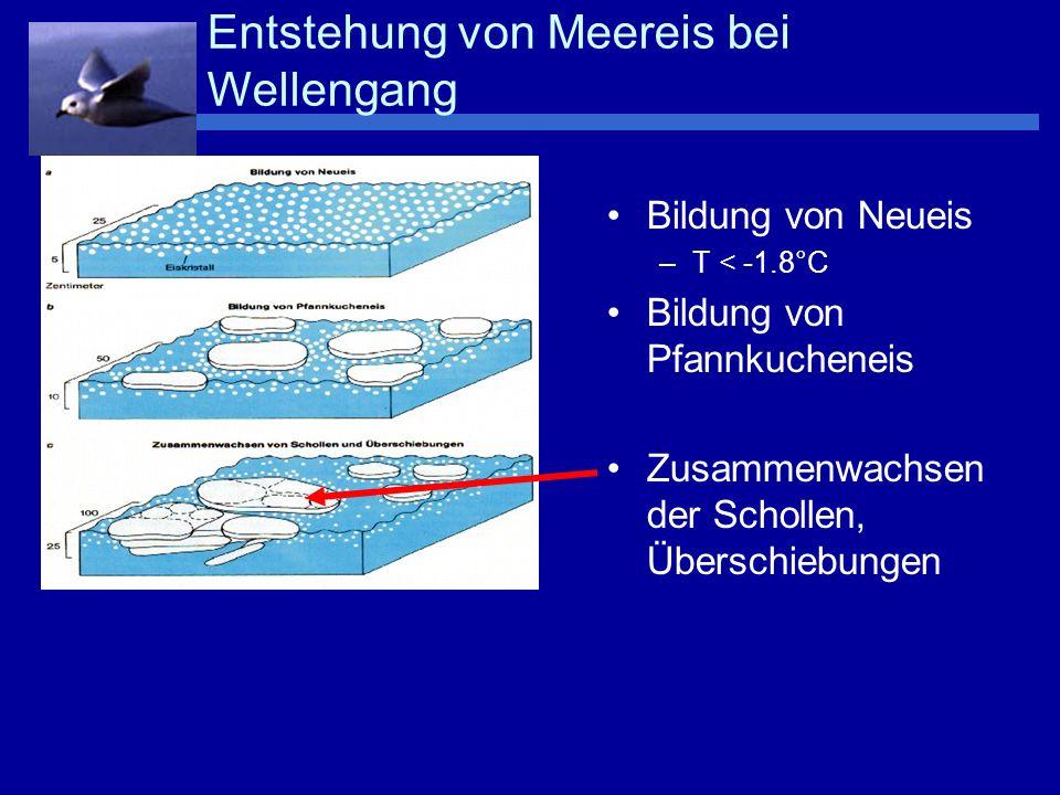 Bildung von Neueis –T < -1.8°C Bildung von Pfannkucheneis Zusammenwachsen der Schollen, Überschiebungen Bildung von Säuleneis, Überschiebungen Entstehung von Meereis bei Wellengang