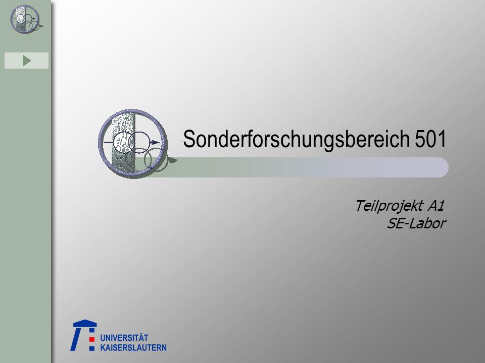 Sonderforschungsbereich 501 Teilprojekt A1 SE-Labor