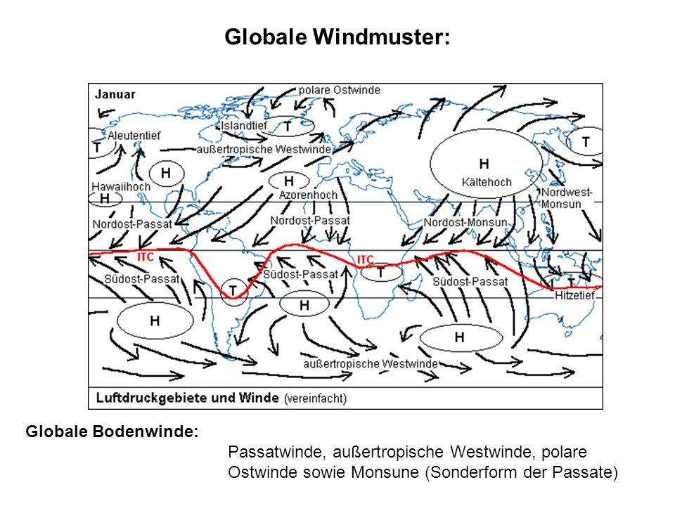 Meeresströmungen: Oberflächenströmungen: bis 200 m Tiefe; entstehen durch Windsysteme der Erde in Verbindung mit der Corioliskraft