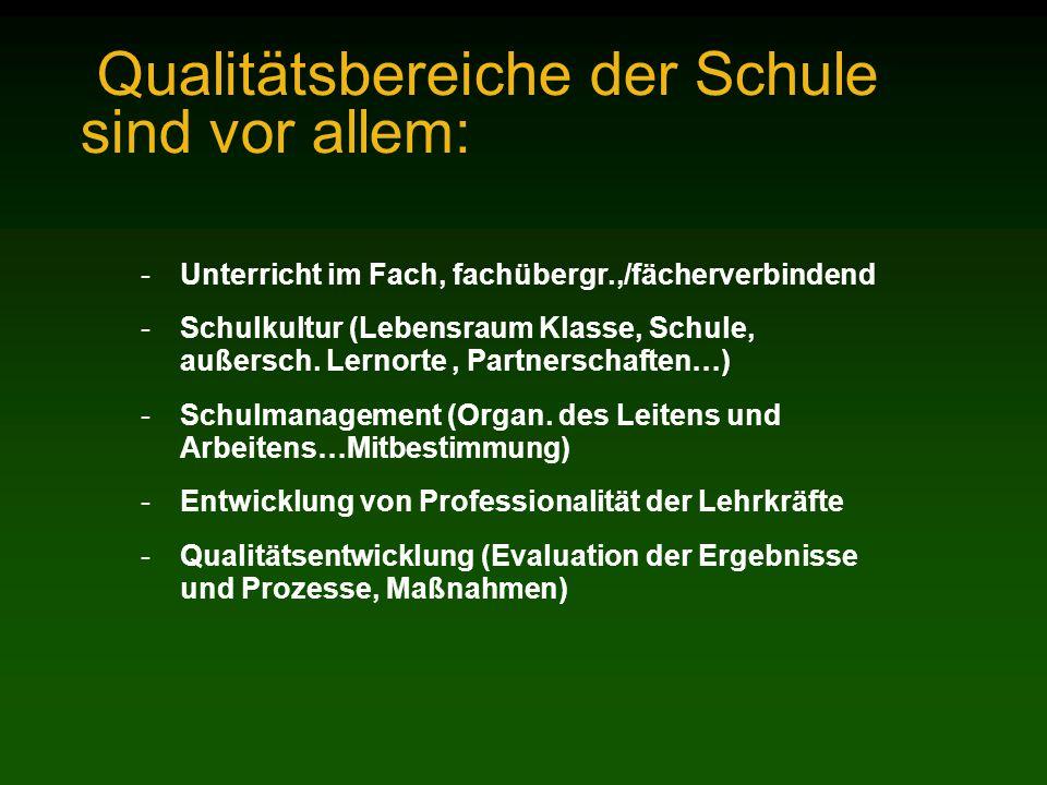 Qualitätsbereiche der Schule sind vor allem: -Unterricht im Fach, fachübergr.,/fächerverbindend -Schulkultur (Lebensraum Klasse, Schule, außersch. Ler