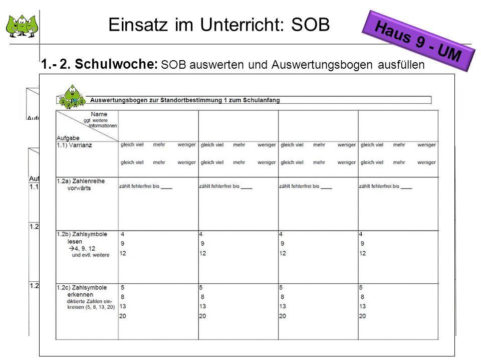 September 2011 © PIK AS (http://www.pikas.uni-dortmund.de/) 14 1.- 2. Schulwoche: SOB auswerten und Auswertungsbogen ausfüllen Einsatz im Unterricht: