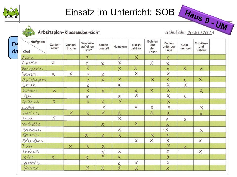 September 2011 © PIK AS (http://www.pikas.uni-dortmund.de/) 16 Arbeitsplan für jedes Kind und Klassenübersicht ausfüllen Einsatz im Unterricht: SOB De