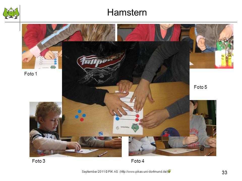 Foto 2 33 Hamstern September 2011 © PIK AS (http://www.pikas.uni-dortmund.de/) Foto 1 Foto 5 Foto 3Foto 4