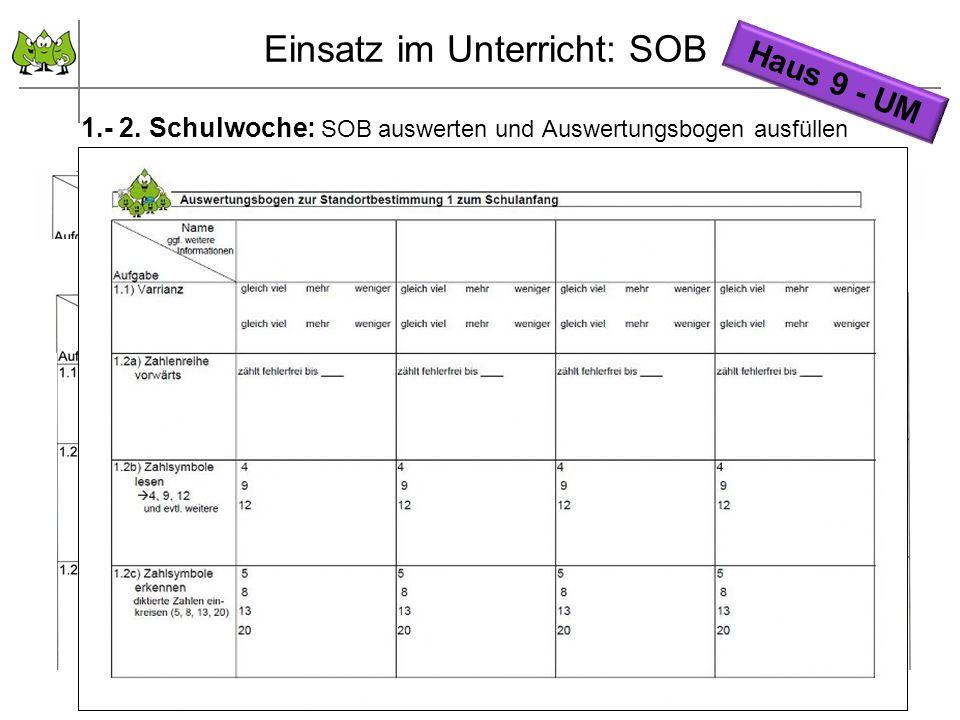 September 2011 © PIK AS (http://www.pikas.uni-dortmund.de/) 18 1.- 2. Schulwoche: SOB auswerten und Auswertungsbogen ausfüllen Haus 9 - UM Einsatz im