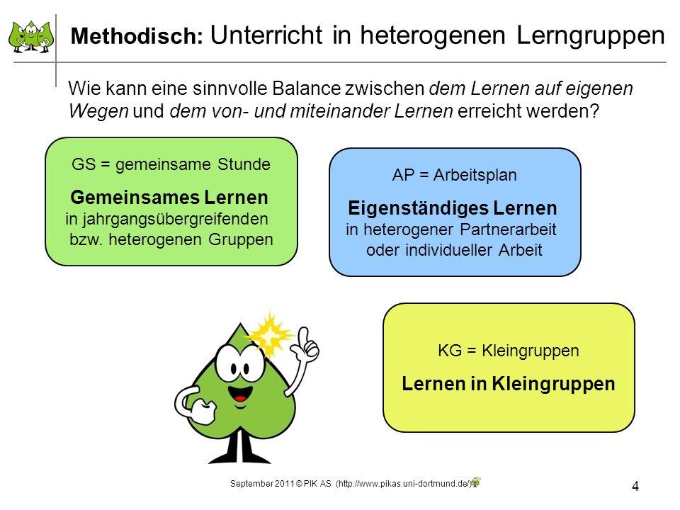 Gemeinsames Lernen Gemeinsamer Einstieg (Ziel: Prozess- und Zieltransparenz geben) Arbeitsphase gemeinsame Reflexions-/Abschlussphase 5 GS = gemeinsame Stunde Gemeinsames Lernen in jahrgangsübergreifenden bzw.