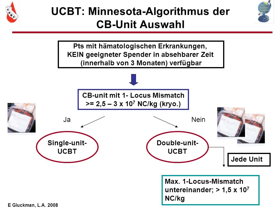 UCBT: Minnesota-Algorithmus der CB-Unit Auswahl Pts mit hämatologischen Erkrankungen, KEIN geeigneter Spender in absehbarer Zeit (innerhalb von 3 Mona