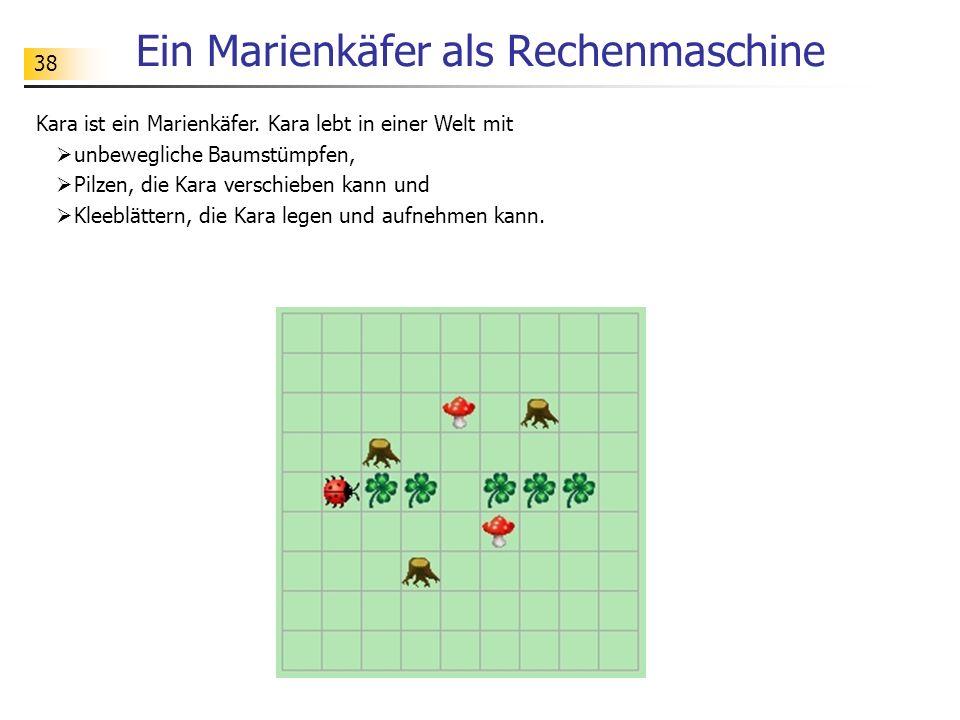 38 Ein Marienkäfer als Rechenmaschine Kara ist ein Marienkäfer. Kara lebt in einer Welt mit unbewegliche Baumstümpfen, Pilzen, die Kara verschieben ka
