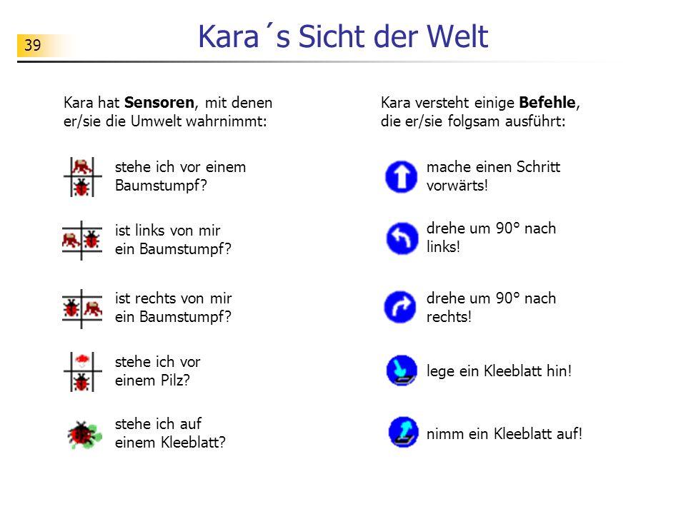 39 Kara´s Sicht der Welt Kara hat Sensoren, mit denen er/sie die Umwelt wahrnimmt: stehe ich vor einem Baumstumpf? ist links von mir ein Baumstumpf? i