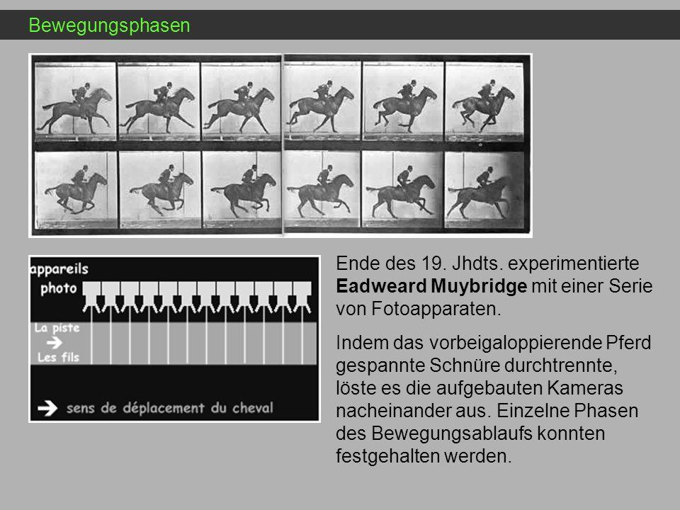 Bewegungsphasen Ende des 19. Jhdts. experimentierte Eadweard Muybridge mit einer Serie von Fotoapparaten. Indem das vorbeigaloppierende Pferd gespannt