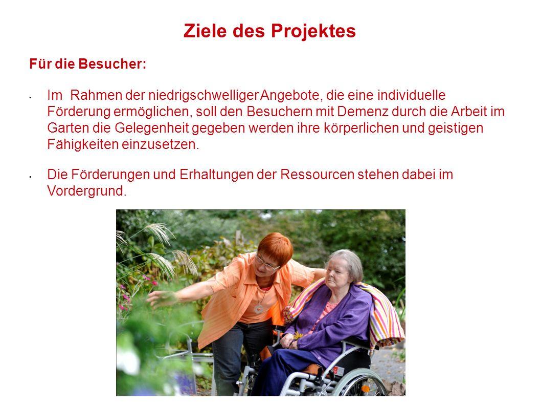 Ziele des Projektes Für die Besucher: Im Rahmen der niedrigschwelliger Angebote, die eine individuelle Förderung ermöglichen, soll den Besuchern mit D