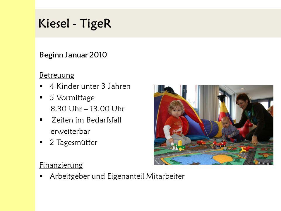Kiesel - TigeR Beginn Januar 2010 Betreuung 4 Kinder unter 3 Jahren 5 Vormittage 8.30 Uhr – 13.00 Uhr Zeiten im Bedarfsfall erweiterbar 2 Tagesmütter Finanzierung Arbeitgeber und Eigenanteil Mitarbeiter