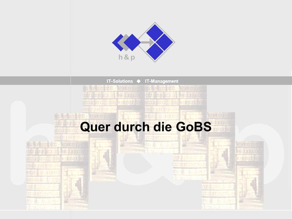 IT-Solutions IT-Management Quer durch die GoBS
