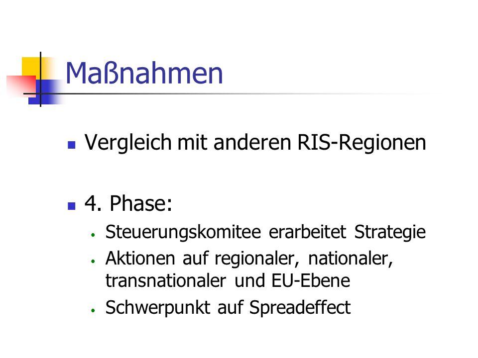 Maßnahmen Phase 1 und 2: Bedürfnisse der Firmen in der Region feststellen und analysieren Analyse der finanziellen Situation Orientierung am restlichen Europa Diskussion des Zwischenberichts in Workshops