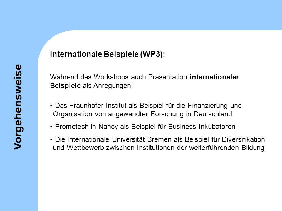 Während des Workshops auch Präsentation internationaler Beispiele als Anregungen: Das Fraunhofer Institut als Beispiel für die Finanzierung und Organi