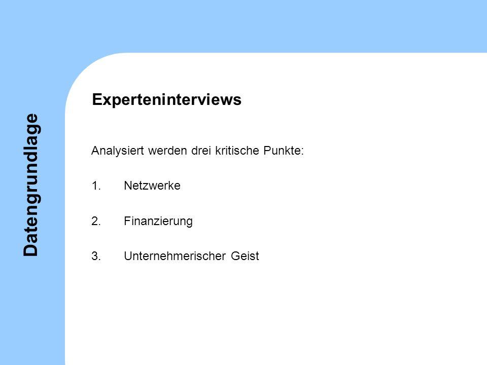 Experteninterviews Analysiert werden drei kritische Punkte: 1.Netzwerke 2.Finanzierung 3.Unternehmerischer Geist Datengrundlage