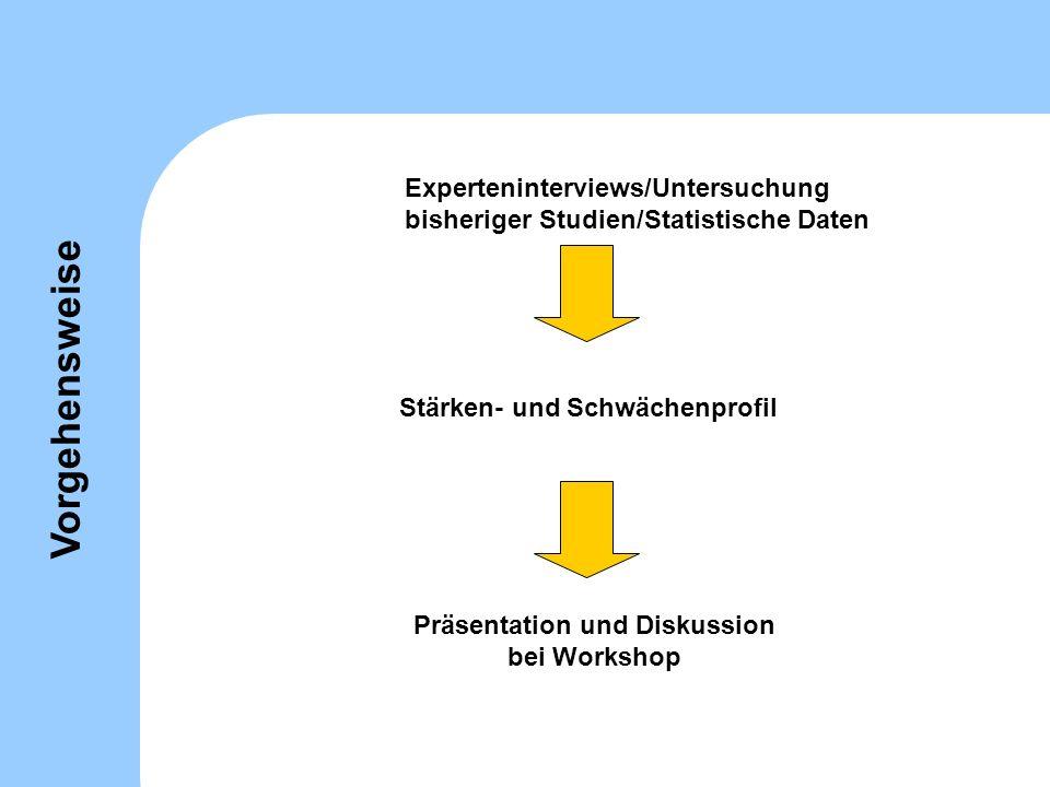 Experteninterviews/Untersuchung bisheriger Studien/Statistische Daten Präsentation und Diskussion bei Workshop Stärken- und Schwächenprofil Vorgehensw
