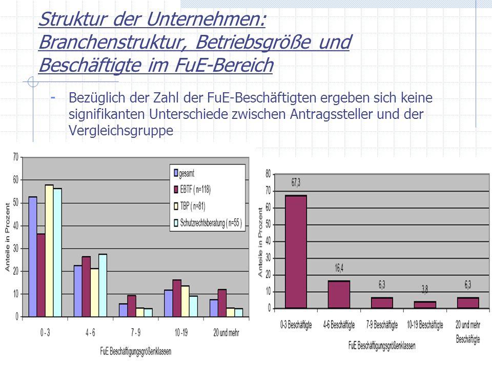 Struktur der Unternehmen: Branchenstruktur, Betriebsgröße und Beschäftigte im FuE-Bereich - Bezüglich der Zahl der FuE-Beschäftigten ergeben sich kein