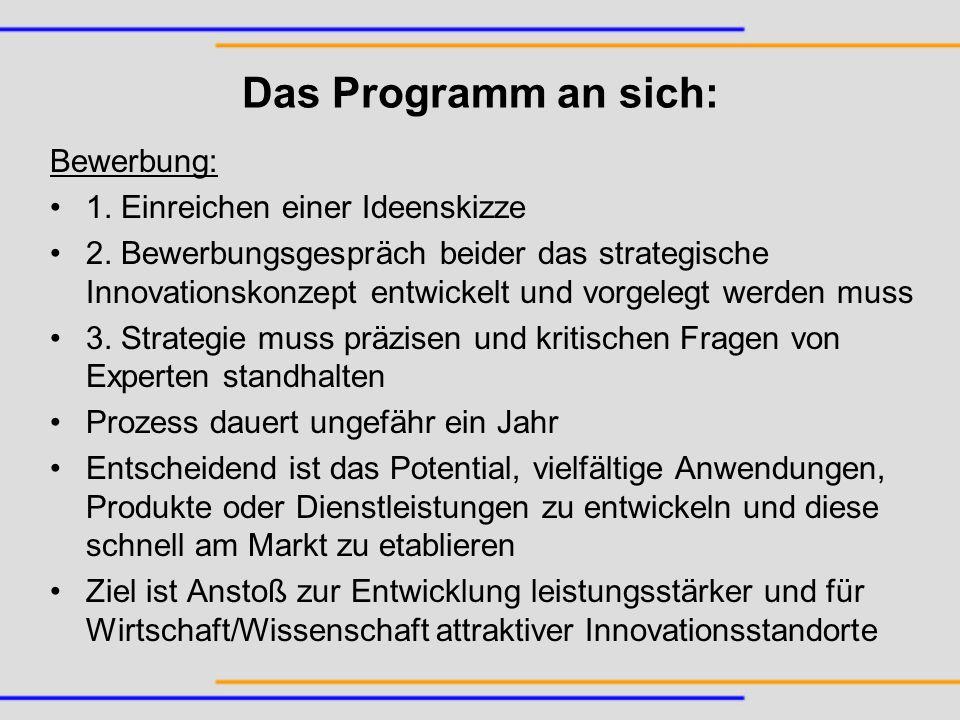 Das Programm an sich: Bewerbung: 1. Einreichen einer Ideenskizze 2. Bewerbungsgespräch beider das strategische Innovationskonzept entwickelt und vorge