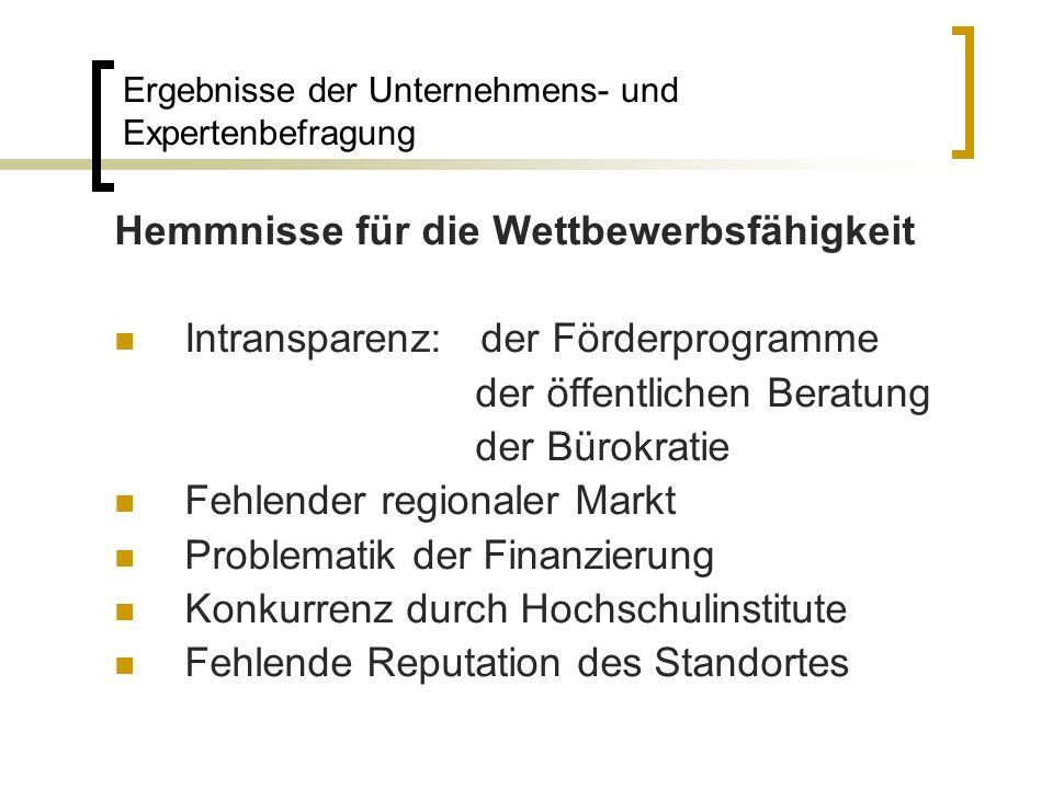 Hemmnisse für die Wettbewerbsfähigkeit Intransparenz: der Förderprogramme der öffentlichen Beratung der Bürokratie Fehlender regionaler Markt Problema