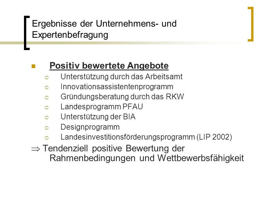 Positiv bewertete Angebote Unterstützung durch das Arbeitsamt Innovationsassistentenprogramm Gründungsberatung durch das RKW Landesprogramm PFAU Unter