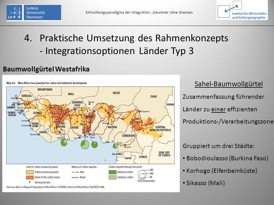 4.Praktische Umsetzung des Rahmenkonzepts - Integrationsoptionen Länder Typ 3 Entwicklungsparadigma der Integration: Gewinner ohne Grenzen Baumwollgür