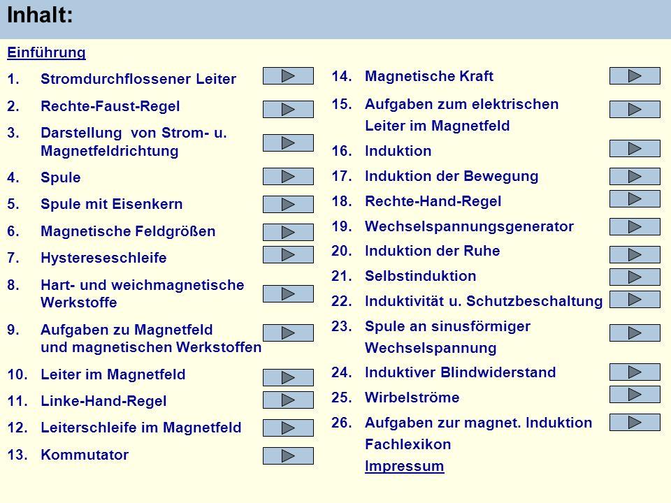 14.Magnetische Kraft 15.Aufgaben zum elektrischen Leiter im Magnetfeld 16.Induktion 17.Induktion der Bewegung 18.Rechte-Hand-Regel 19.Wechselspannungs