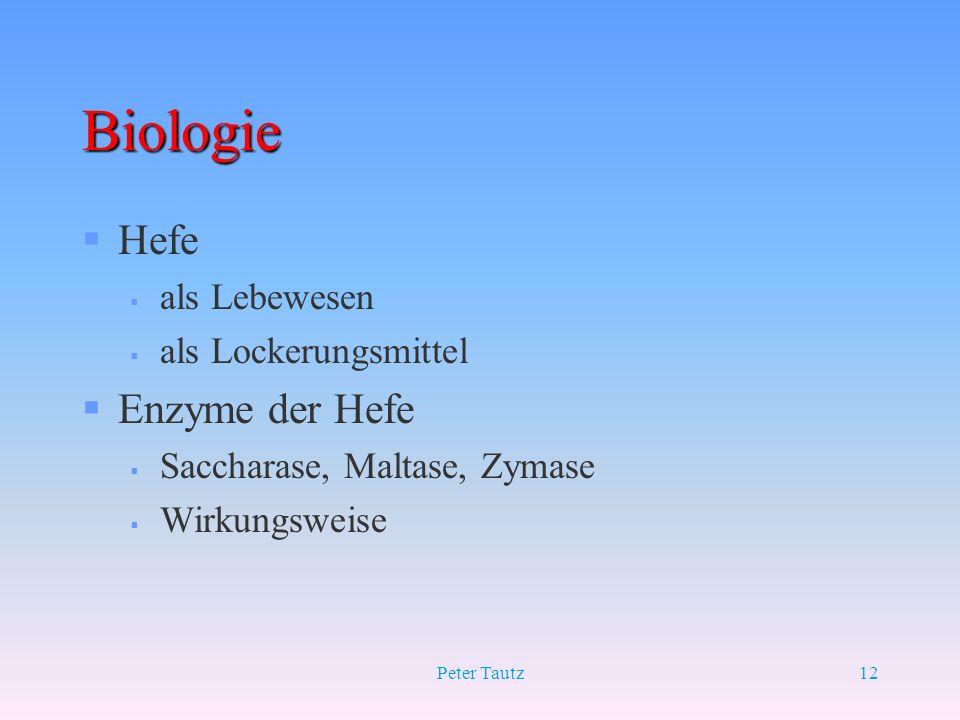 Peter Tautz12 Biologie §Hefe § als Lebewesen § als Lockerungsmittel §Enzyme der Hefe § Saccharase, Maltase, Zymase § Wirkungsweise