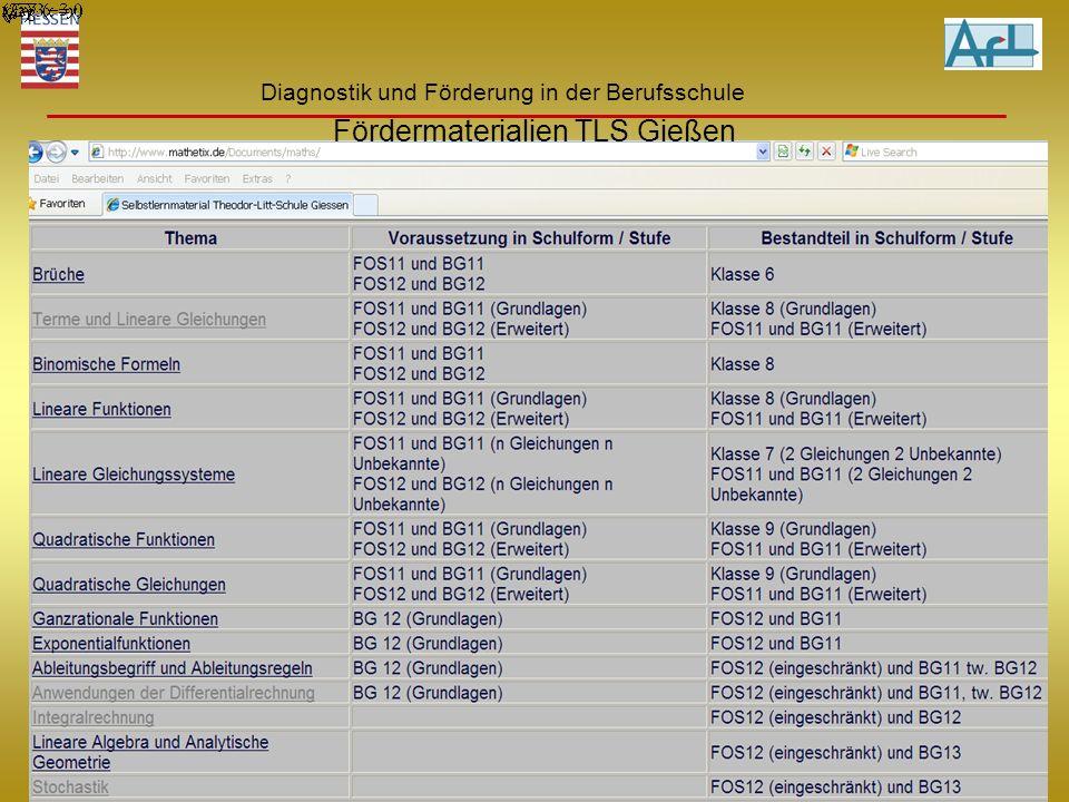 Hinze 22.6.2010 Diagnostik und Förderung in der Berufsschule Fördermaterialien TLS Gießen