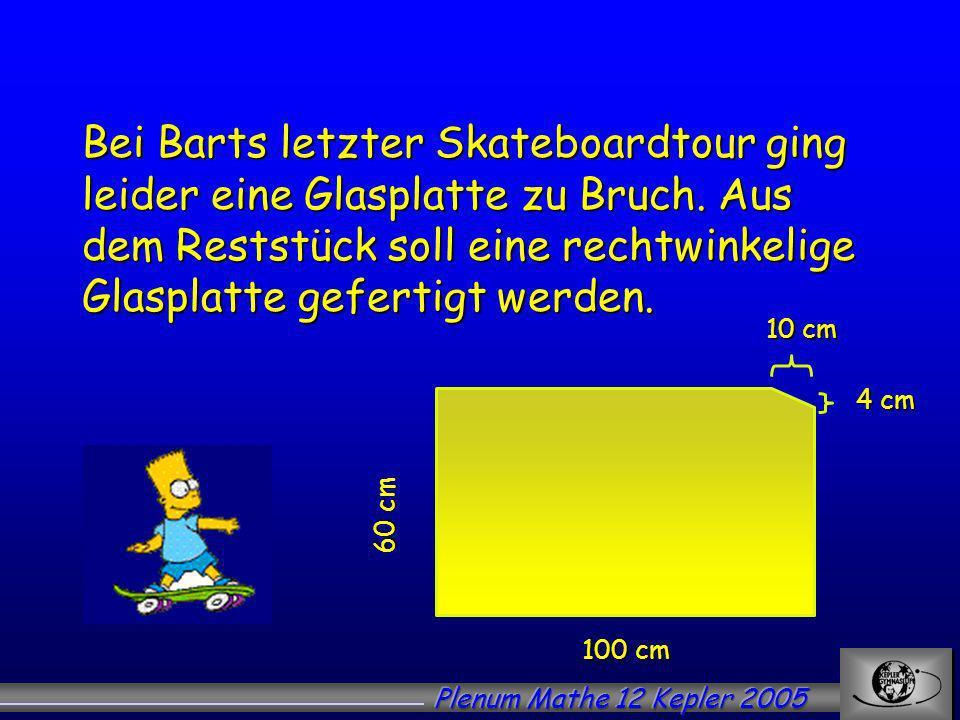 Bei Barts letzter Skateboardtour ging leider eine Glasplatte zu Bruch.