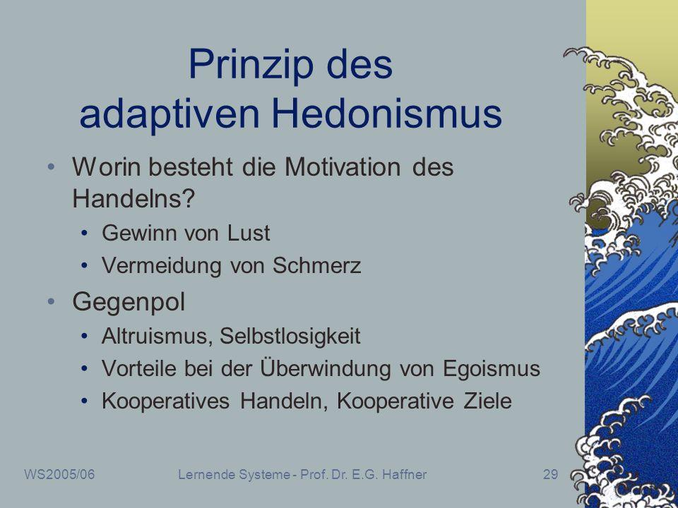 WS2005/06Lernende Systeme - Prof. Dr. E.G. Haffner29 Prinzip des adaptiven Hedonismus Worin besteht die Motivation des Handelns? Gewinn von Lust Verme