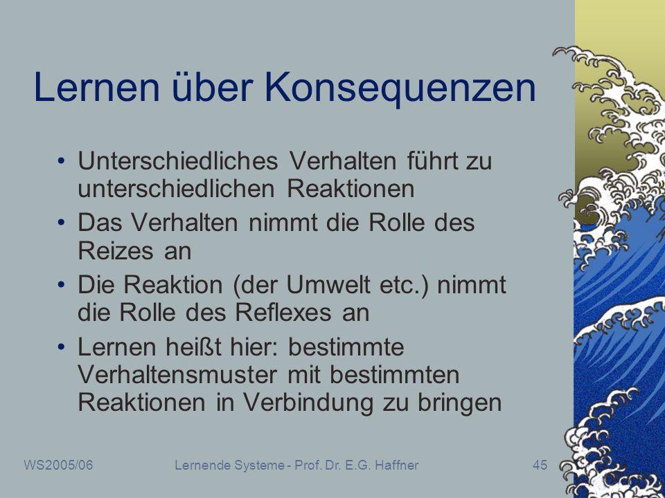 WS2005/06Lernende Systeme - Prof. Dr. E.G. Haffner45 Lernen über Konsequenzen Unterschiedliches Verhalten führt zu unterschiedlichen Reaktionen Das Ve