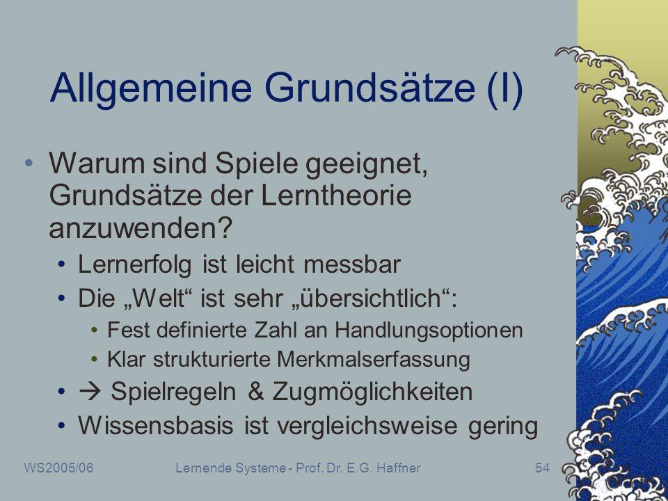 WS2005/06Lernende Systeme - Prof. Dr. E.G. Haffner54 Allgemeine Grundsätze (I) Warum sind Spiele geeignet, Grundsätze der Lerntheorie anzuwenden? Lern