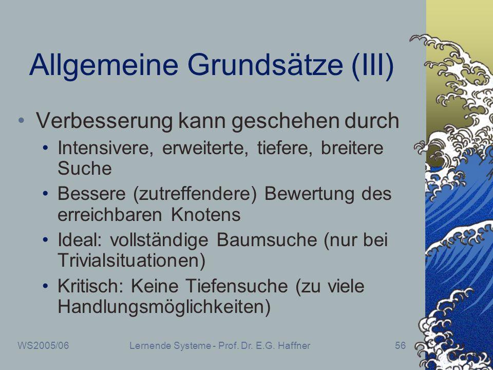 WS2005/06Lernende Systeme - Prof. Dr. E.G. Haffner56 Allgemeine Grundsätze (III) Verbesserung kann geschehen durch Intensivere, erweiterte, tiefere, b