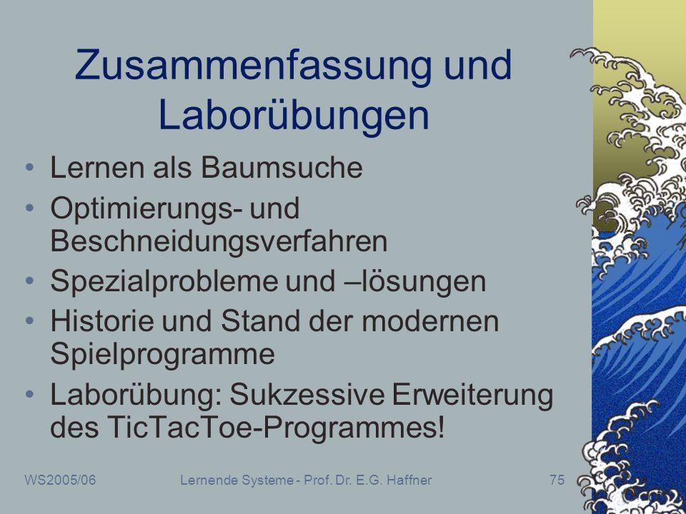 WS2005/06Lernende Systeme - Prof. Dr. E.G. Haffner75 Zusammenfassung und Laborübungen Lernen als Baumsuche Optimierungs- und Beschneidungsverfahren Sp
