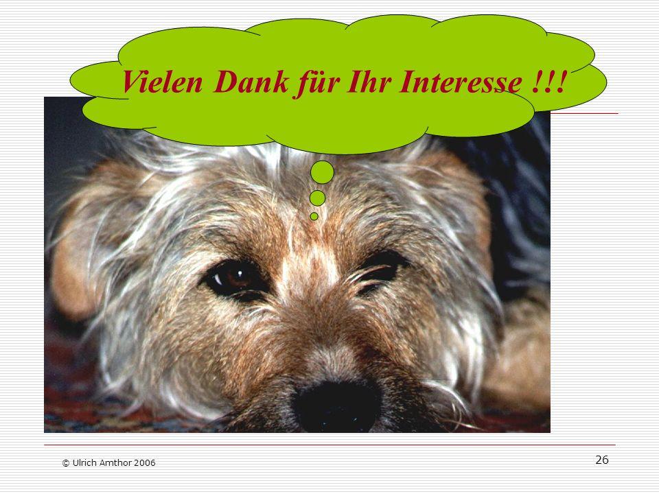 26 © Ulrich Amthor 2006 Vielen Dank für Ihr Interesse !!!