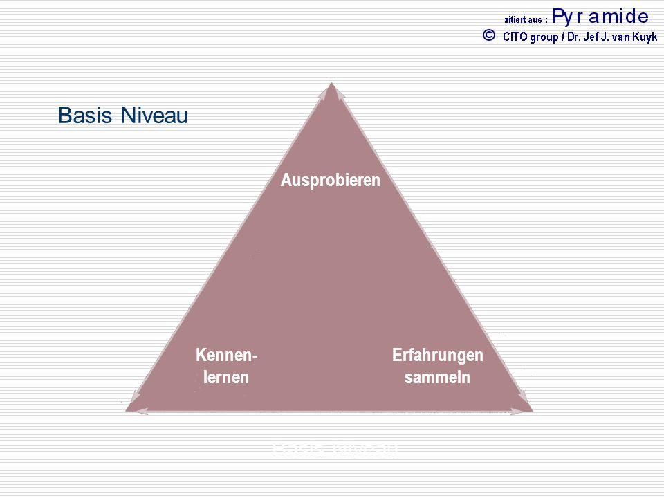 Basis Niveau Kognitive Intelligenz Emotionale Intelligenz Physische Intelligenz Ausprobieren Erfahrungen sammeln Kennen- lernen Basis Niveau